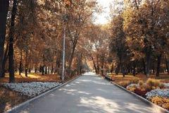 秋天在城市公园 免版税库存照片