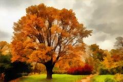 秋天在城市公园 免版税库存图片
