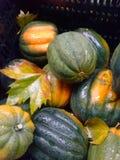 秋天在城市农夫市场上 库存照片