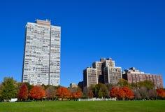 秋天在城市 免版税库存图片