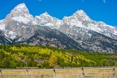 秋天在大提顿峰国家公园 免版税库存图片