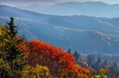 秋天在大烟山俯视 免版税库存照片