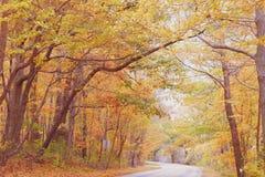 秋天在宾夕法尼亚 免版税库存图片