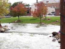 秋天在小河河边的秋天树 免版税库存图片