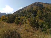 秋天在山森林里 免版税图库摄影