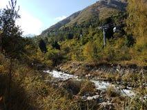 秋天在山森林里 图库摄影
