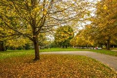秋天在巴恩 库存图片