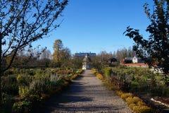 秋天在庭院里 免版税库存照片