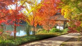秋天在庭院1里 库存图片