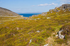 秋天在挪威 库存图片