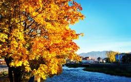 秋天在斯洛伐克 免版税库存照片