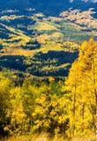 秋天在斯廷博特斯普林斯科罗拉多 免版税库存图片