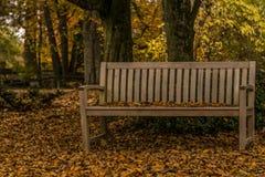 秋天在斯洛文尼亚 免版税库存照片