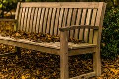 秋天在斯洛文尼亚 图库摄影