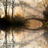 秋天在有薄雾的公园 库存照片