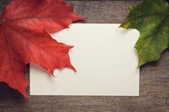 秋天在木桌上的槭树叶子 免版税图库摄影