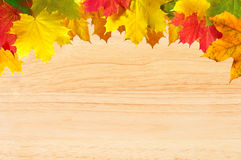 秋天在木纹理特写镜头的槭树叶子 图库摄影