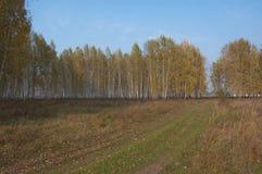 秋天在村庄 库存照片