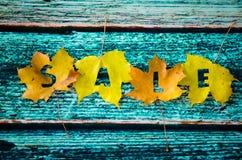 秋天在槭树叶子的销售概念 免版税图库摄影
