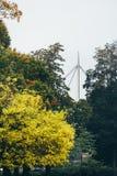 秋天在欧登塞,丹麦 免版税图库摄影