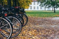 秋天在欧登塞,丹麦 免版税库存图片