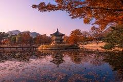 秋天在汉城韩国 免版税库存照片