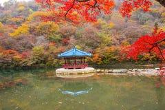 秋天在汉城韩国 免版税库存图片