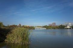 秋天在淄博植物园里 免版税库存图片