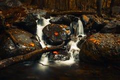 秋天在瀑布的下落的黄色和红色叶子在Vitosha山 免版税库存图片