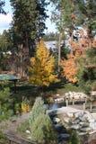 秋天在爱达荷 库存照片