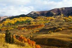 秋天在登上顶饰的小山科罗拉多附近上色 免版税库存图片