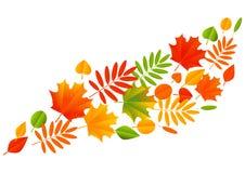 秋天在白色背景的颜色叶子 免版税库存图片