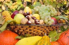 秋天在盘组成的水果和蔬菜装饰 免版税图库摄影