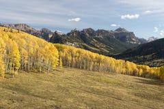 秋天在科罗拉多高国家 免版税图库摄影