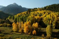 秋天在科罗拉多 免版税库存图片