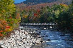 秋天在空白山新罕布什尔上的颜色变化 免版税库存图片