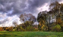 秋天在立陶宛的涅里斯河地方公园 免版税库存图片