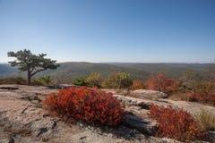秋天在纽约上州 免版税库存照片