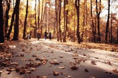 秋天在美国中央公园 库存照片