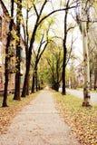秋天在老城镇地区 免版税图库摄影