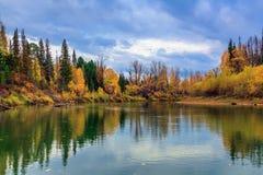 秋天在西伯利亚 免版税库存照片