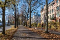 秋天在诺尔雪平,瑞典 库存照片