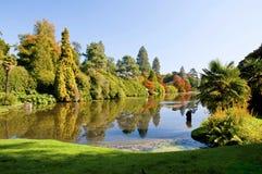 秋天在谢菲尔德庭院里在南英国 免版税库存照片