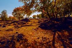 秋天在镜泊湖 库存照片