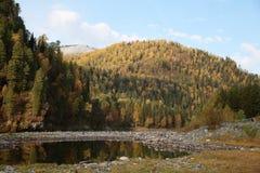 秋天在阿尔泰 库存图片