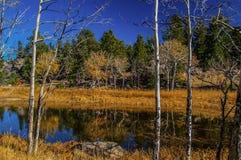 秋天在隐士公园 免版税图库摄影