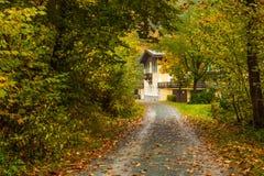 秋天在巴伐利亚 免版税库存照片
