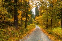 秋天在巴伐利亚 图库摄影