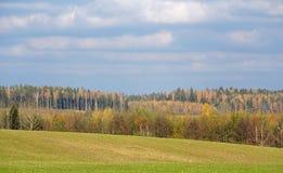 秋天在10月 自然和空间的颜色 调遣森林 明亮的叶子 免版税库存照片