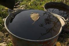 秋天在水的下落的叶子在桶 免版税库存照片